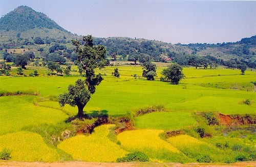 Aruku Valley, AP.... Travel Guide India, India Travel Packages, Free Travel Guides: March 2011