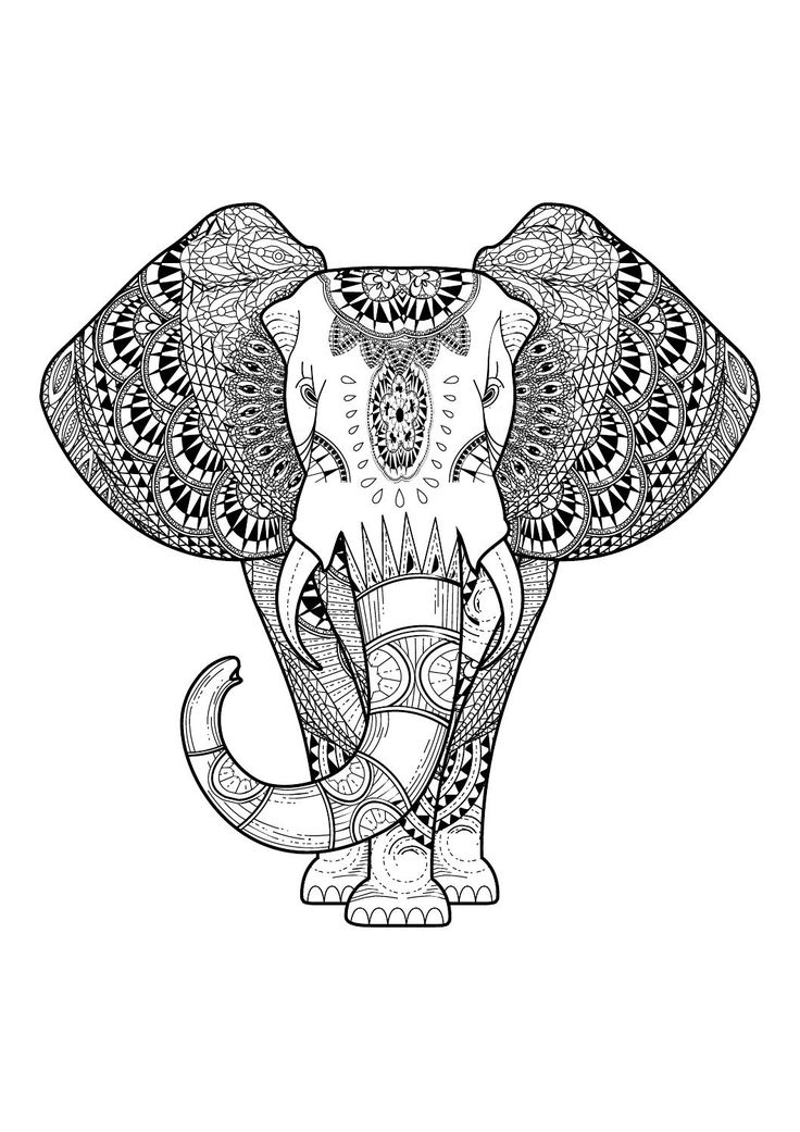 Adult Colouring~Elephants~Zentangles: A Collection Of Art