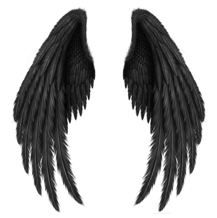 angel wings black background - photo #30