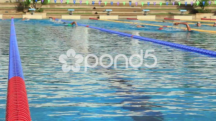 Best 25 Olympic Size Swimming Pool Ideas On Pinterest Chernobyl Location Diving Weights And