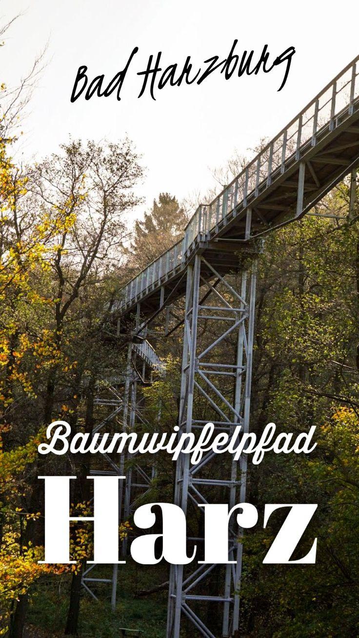 Luchstour Bad Harzburg