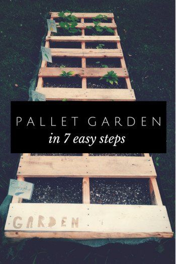 Create A Pallet Garden | 14 Pallet Projects For Your Garden This Spring