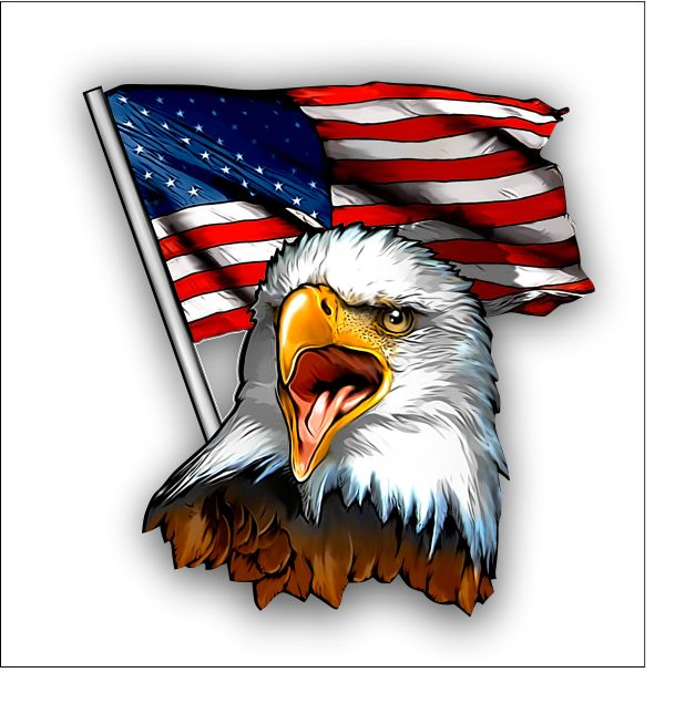 Bald eagle and american flag sticker decal