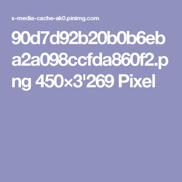 90d7d92b20b0b6eba2a098ccfda860f2.png 450×3'269 Pixel