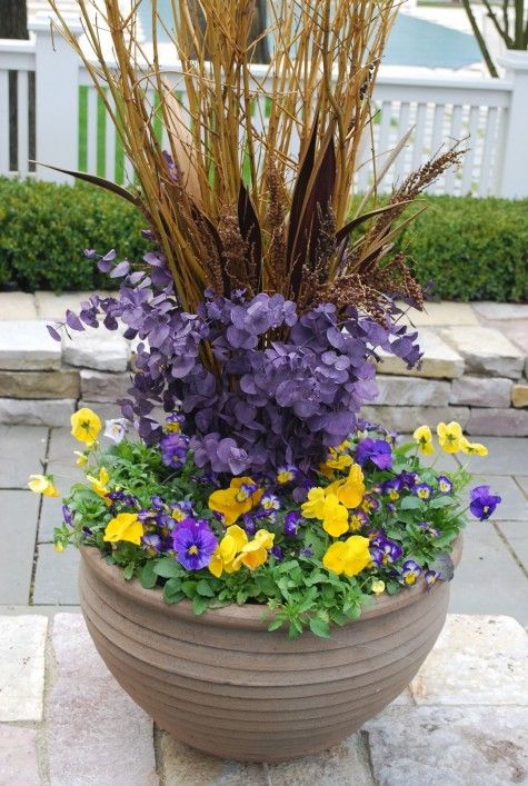 67 best spring containers images on pinterest container garden great idea for spring front porchink i will use potted flowerspotted mightylinksfo Image collections
