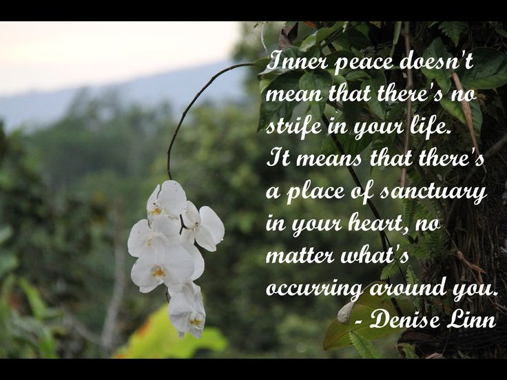 Inner peace does not mean that there's no strife in your life. It means that there is a place of sanctuary in your heart, no matter what's occurring around you. - Denise Linn