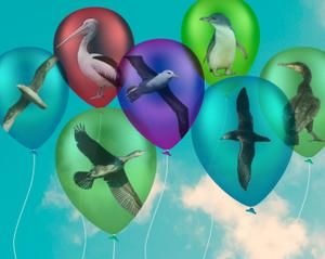 When balloons fly, seabirds die. I've become balloon smart and seabird safe at zoo.org.au/balloons. You can too! #bubblesnotballoons