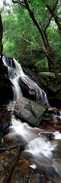 Caressing Waters|Somersby Falls is a picturesque waterfall on the Central Coast