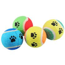Bulk Tennis Ball Dog Toys , 2-ct. Packs at DollarTree.com