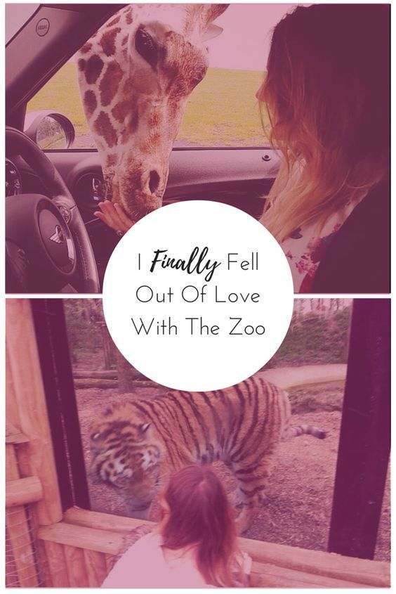 Its been a tough break up. But me and zoos are officially over.