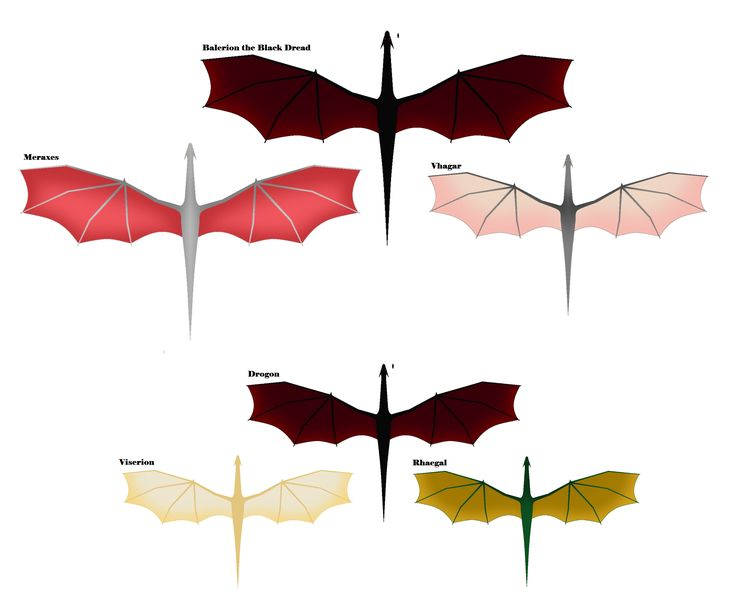 [NO SPOILERS] Aegon's dragons compared to Dany's dragons