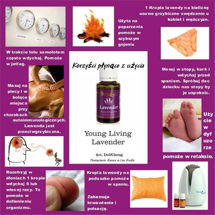 Olejki eteryczne Lavender