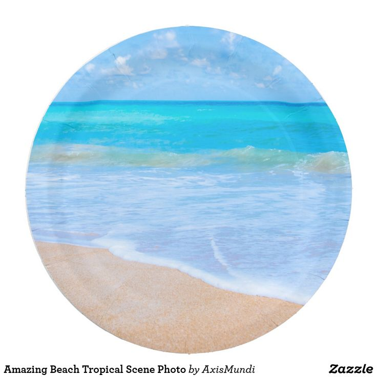 Amazing Beach Tropical Scene Photo Paper Plate