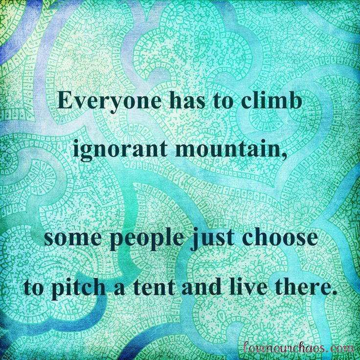 ignorant people quotes and images | Everyone has to climb ignorant mountain, some people just choose to ...