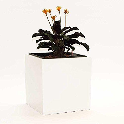 Die besten 25+ Blumenkübel fiberglas Ideen auf Pinterest ...