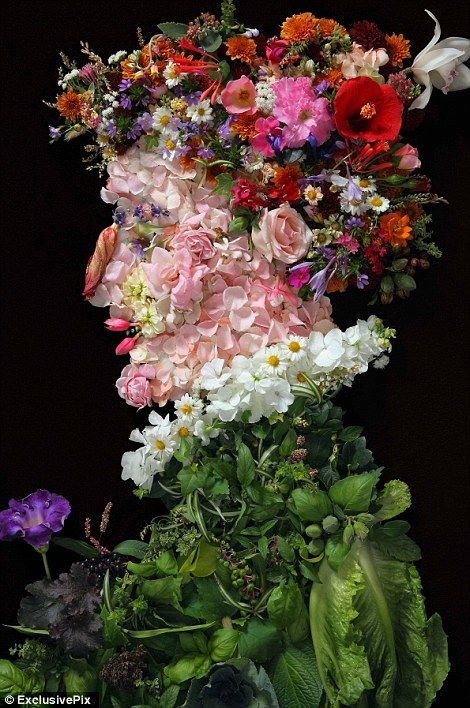 A stunning image of a gentleman made entirely out of actual flowers and leaves originally painted by Arcimboldo //  Arcimboldo is known as a 16th-century Mannerist. A transitional period from 1520 to 1590, Mannerism adopted some artistic elements from the High Renaissance and influenced other elements in the Baroque period. Arcimboldo also tried to show his appreciation of nature through his portraits.