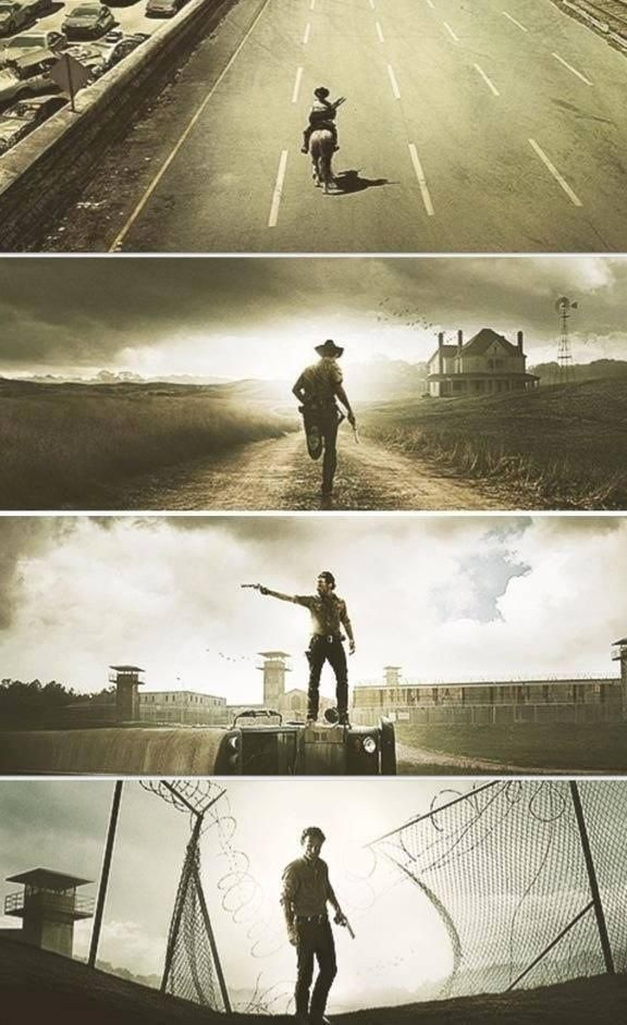 The Walking Dead, S1-S4
