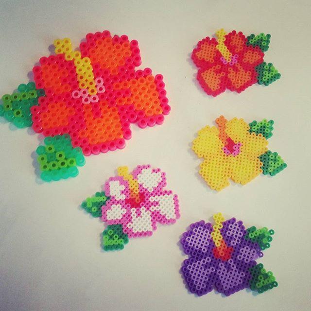 Hibiskus flowers perler beads by craftygirlmn