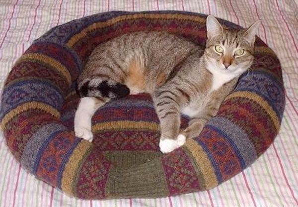 Recyclez un vieux pull en coussin pour chat