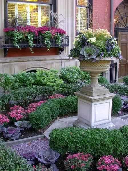 Beautiful garden with boxwoods, kale, mums, gravel walkway, and urn