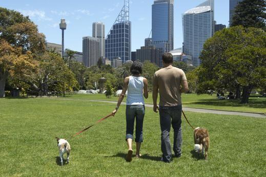 5. Stroll Through the Park