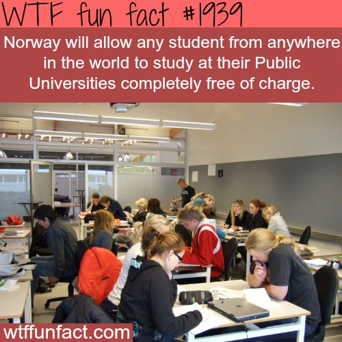 Study in Norway for FREE-WTF fun facts Oh, so , well, ... that sucks. I missed out.
