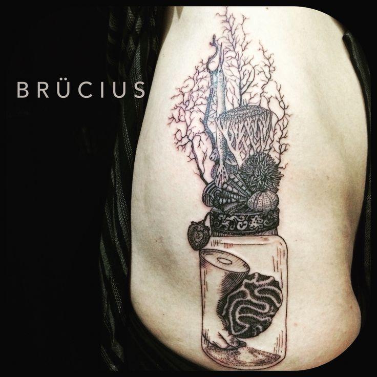 #BRÜCIUS #TATTOO #SF #SanFrancisco #brucius #natural #science #engraving #etching #sculptoroflines #dotwork #blackwork #penandink #lines #nature #sea #memorial #jar #hand #shells #coral