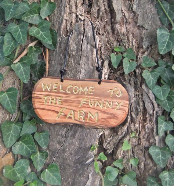 olive wood wall plaque  Welcome To The Funny by ellenisworkshop, $38.00