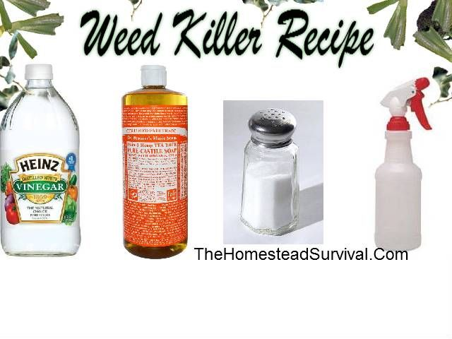 Vinegar weed killing recipe