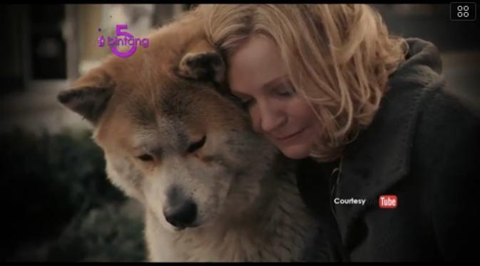 Bintang 5: Anjing Setia, Pantai Selatan, Kecelakaan Kapal Pesiar - http://wp.me/p70qx9-7ex