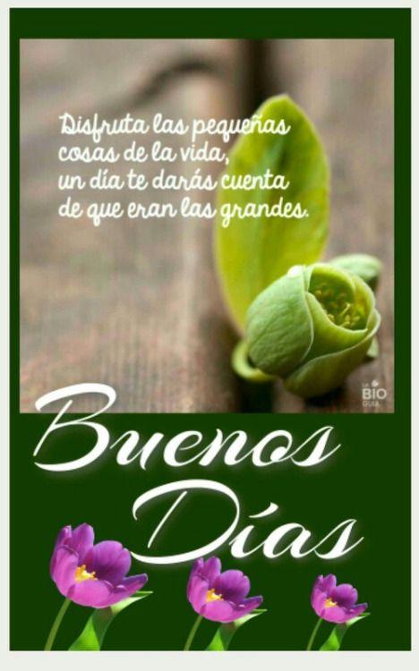 Buenos Dias  http://enviarpostales.net/imagenes/buenos-dias-223/ Saludos de Buenos Días Mensaje Positivo Buenos Días Para Ti Buenos Dias