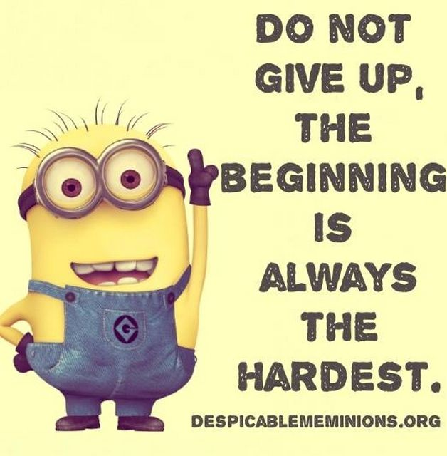 Medical Funny Minion Quotes: 1000+ Ideas About Minion Humor On Pinterest