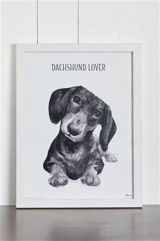 Dog Breed Framed Print