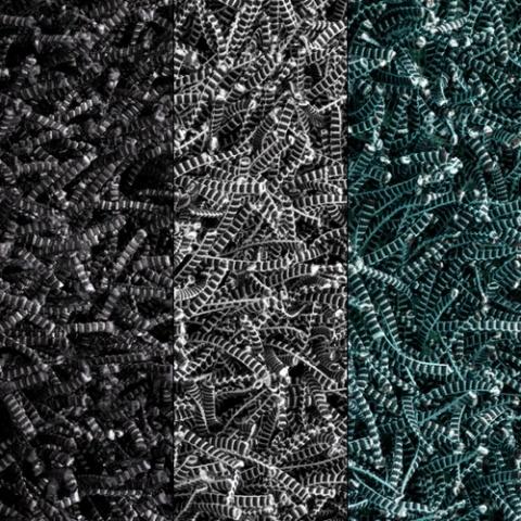 Linie Design / koberec Electric  http://www.horustrade.sk/koberce-s-dlhym-vlasom