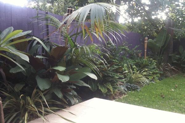 Balinese Tropical Garden Design - Balinese Style Garden, Eastern Suburbs Sydney. Materials - Bright Colours, Foliage Colour, Kentia Palm, Recycled Railway Sleepers, Sawn Sandstone Paving, Flax, Liriopes, Strellitzia