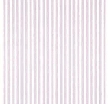 Sanderson New Tiger Stripe