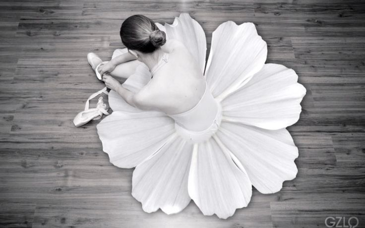 Flowers and dance