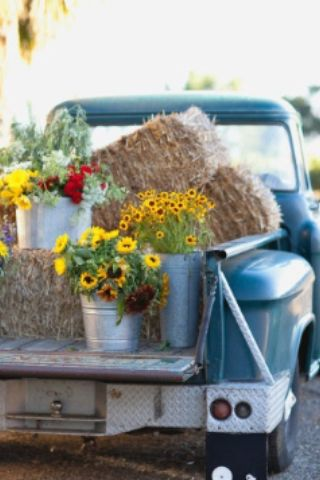 Country living at it's best ... flowers and a blue truck