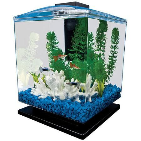 Tetra aquarium cube tank 1 5 gallons kid walmart and for Tetra fish tanks
