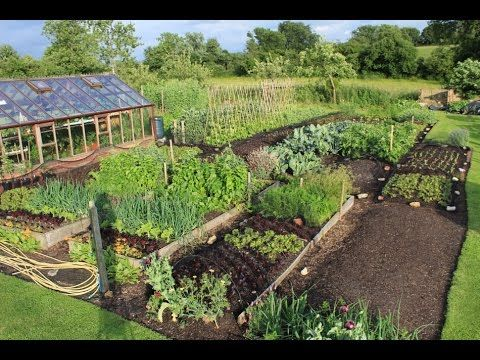 The result of using mulches to transform 3/4 acre (0.3ha), from weeds and grass to intensively cropped vegetables for market on 1/4 acre, also showing the fr...