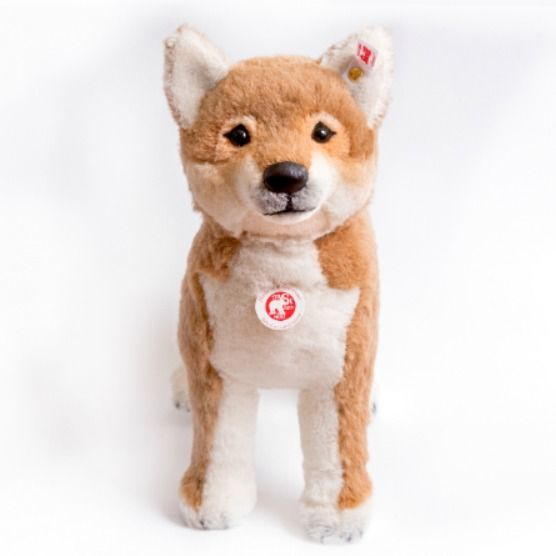 Steiff Shiba-Inu Japan limited dolls Japanese Traditional Dog 12in. F/S #Steiff #AllOccasion