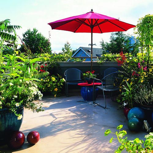Garden Trees Wooden Outdoor Bech Rooftop Garden Garden: 17 Best Images About Entrance With Potted Plants On