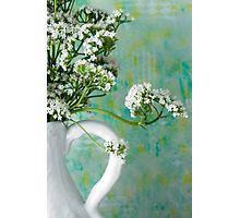 Photographic Print. #valarian #valarianflowers #valarianstilllife #jug #jugart  #valarianart #sandrafoster #sandrafosterredbubble