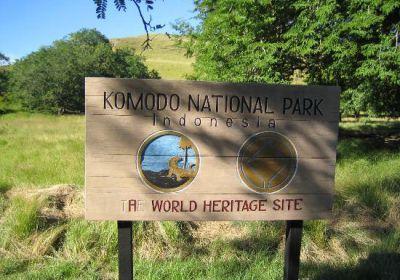 KOMODO Island Adventure - Wonderful Indonesia Actually Asia