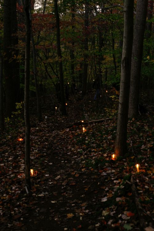 Solar lights would be perfect for this idea! It would be so cool if you lived near the woods or by a trail.