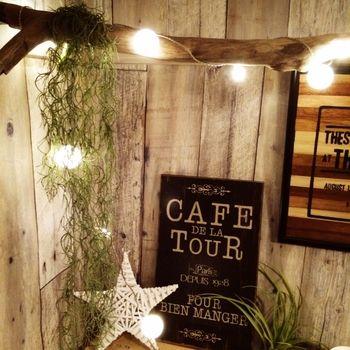 流木に電飾を絡ませてチランジア・ウスネオイデスを垂らせば、まるでカフェのようなとても雰囲気のある空間に。