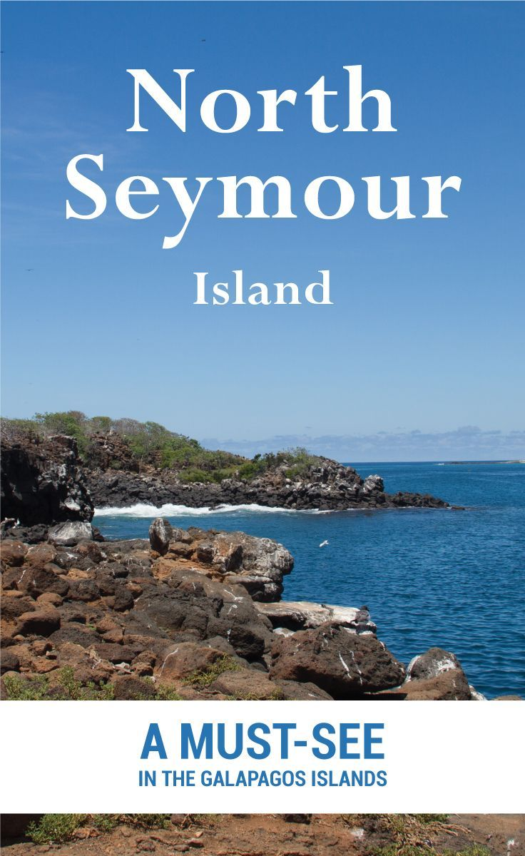 There are many islands in the Galapagos Islands in Ecuador. North Seymour is one of the best you can visit. In this post, I will show you why.  It is a small island that is close to Puerto Ayora.  The island has a visitor trail of only 2 kilometres, but it is so much you can see on the trail.  The Viking Abroad