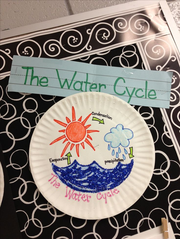 water cycle paper - photo #35