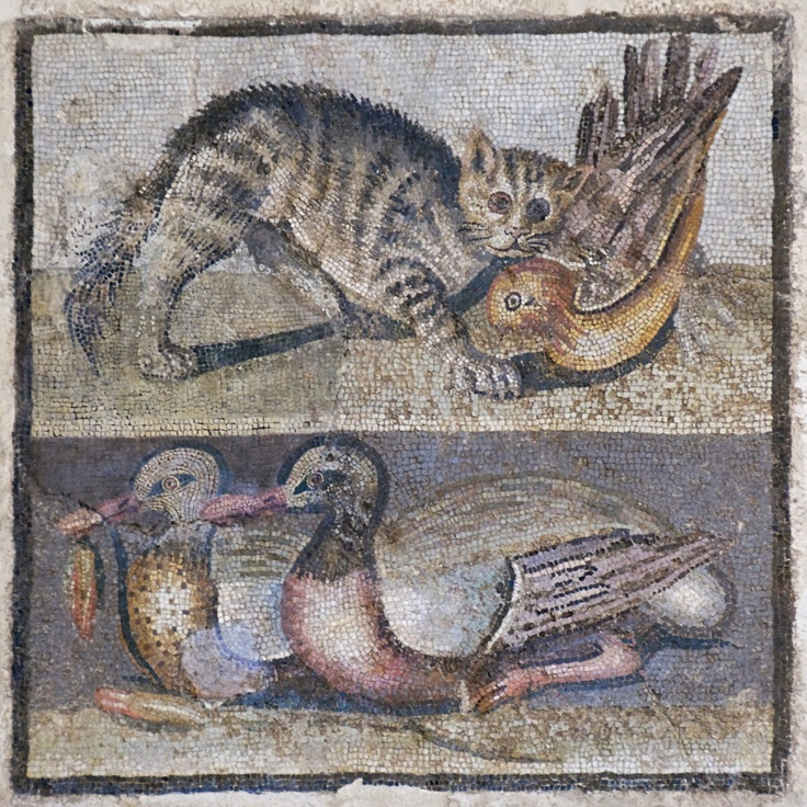 """Central panel of a floor mosaic with a a striped cat attacking a bird on top and two ducks on the bottom - """"Opus vermiculatum"""", Roman artwork of the late Republican era, first quarter of the 1st century BC - Rome's Palazzo Massimo alle Terme, Italy"""