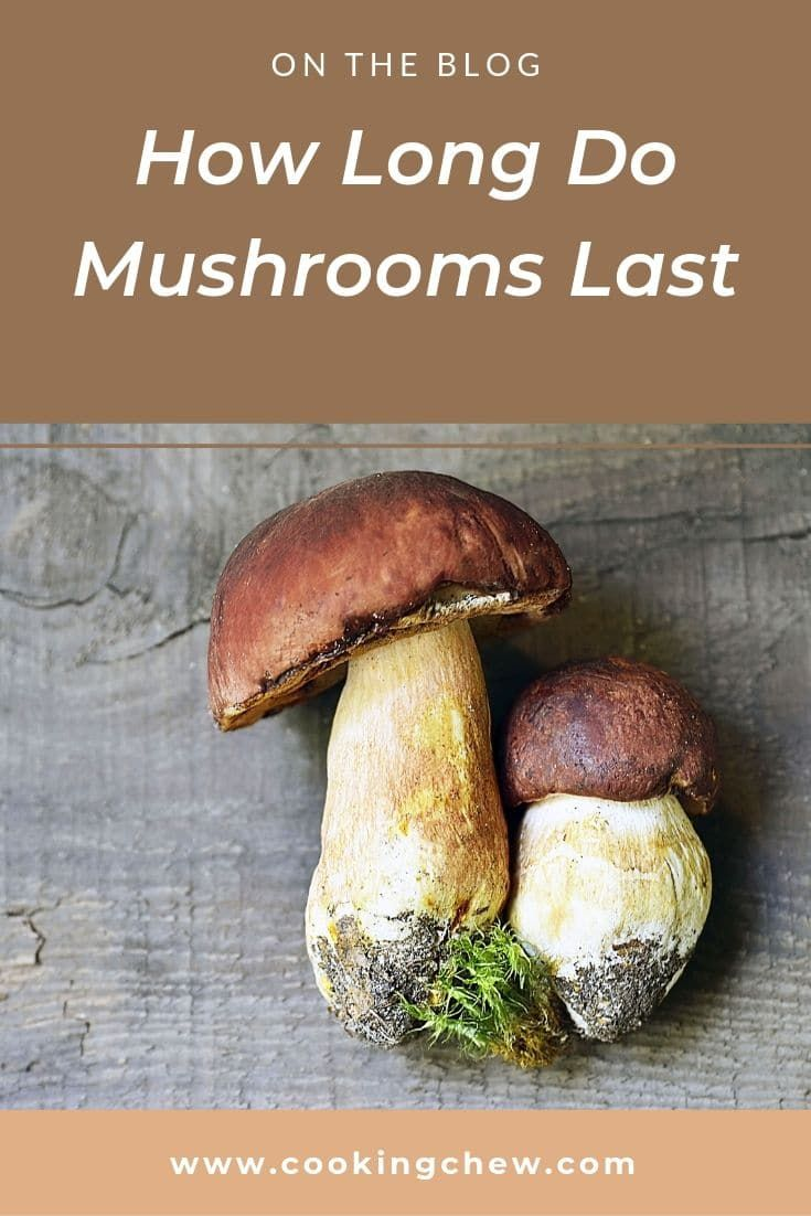 We Love Mushrooms In This House That Is Why Learning More About How Long Mushrooms Last And A Better W Stuffed Mushrooms How To Cook Mushrooms Fresh Mushrooms
